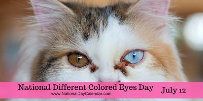 National Different Colored Eyes Day July 12