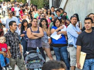up to half of all people enrolled in DACA are fraudulent