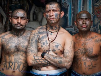 illegal immigrant criminals