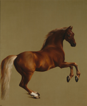Whistlejacket painted by George Stubbs