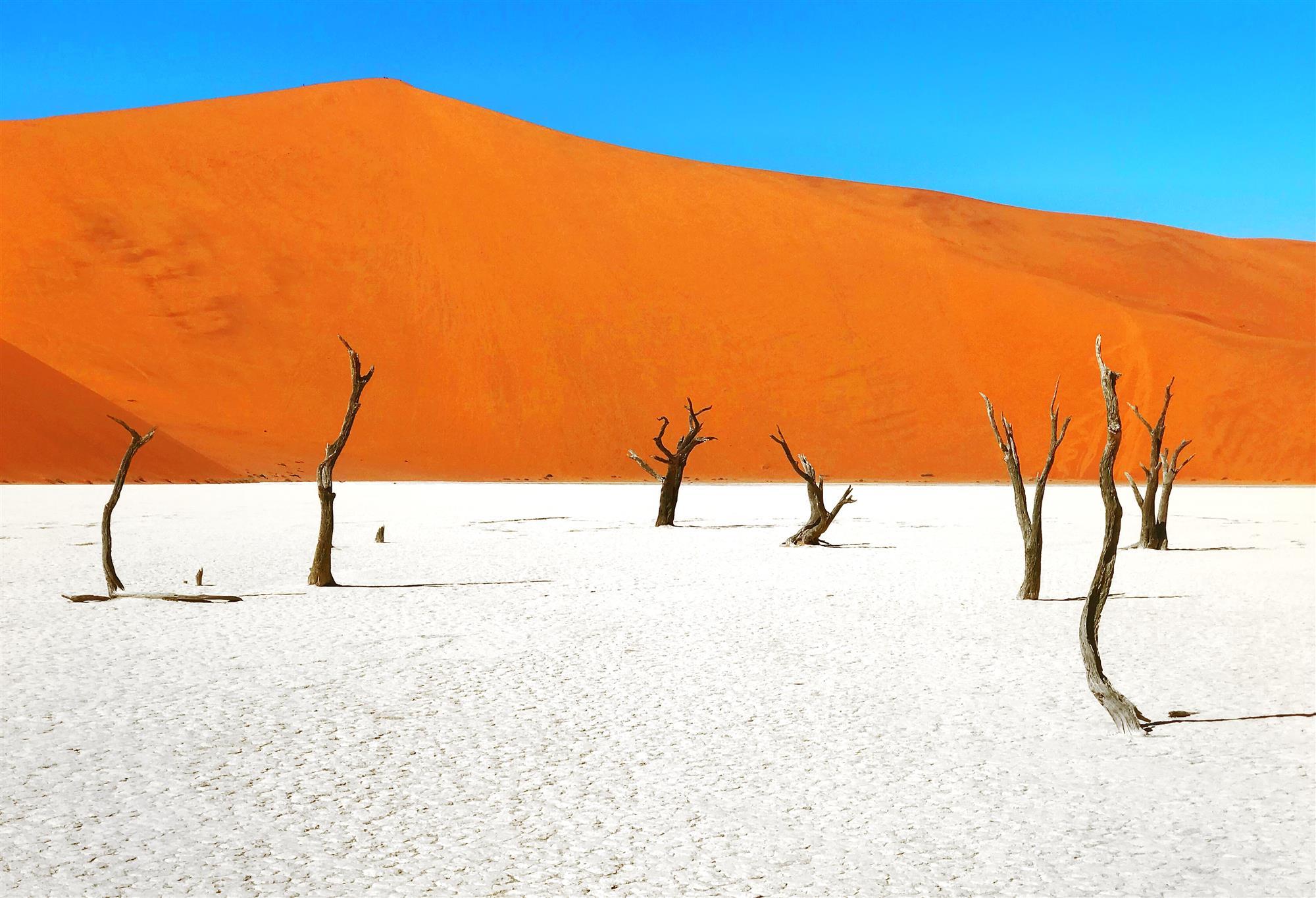Dead Valley, Namibiamejores fotos del 2018
