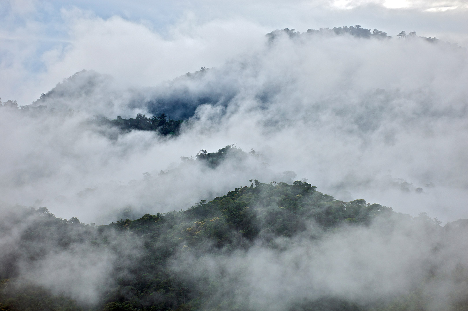 Picture of clouds and mist over the cloud forest in Mindo, Ecuador