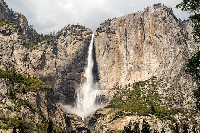 lower yosemite falls with dogs