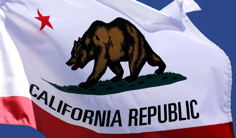 California's Proposition 16 Aims to Overturn State Ban on Racial Preferences