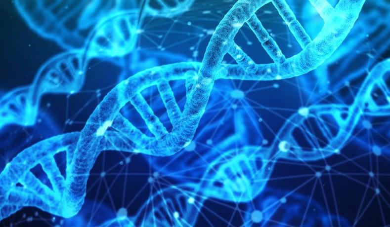 Eugenics-Engineered Babies' Brains Changed by CRISPR