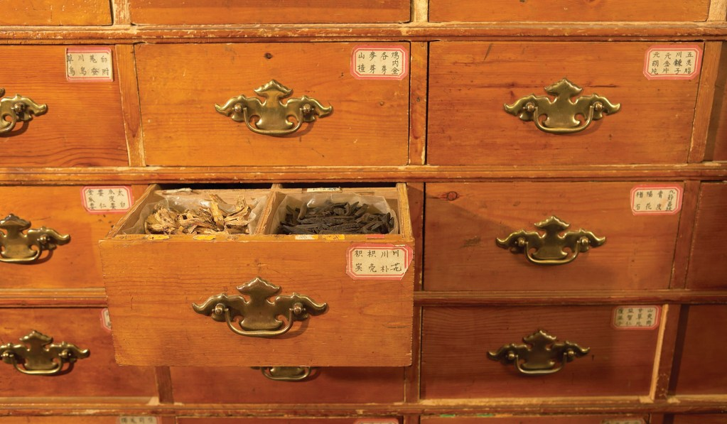 Traditional Chinese Medicine as Soft-Power Play