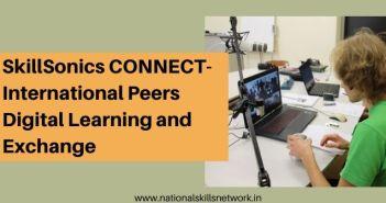 International Peers Digital Learning and Exchange