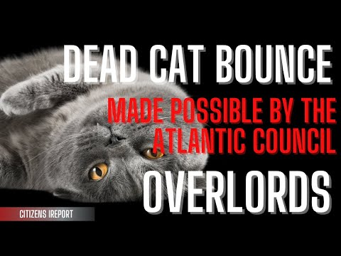Dead Cat Bounce & Atlantic Council Overlords