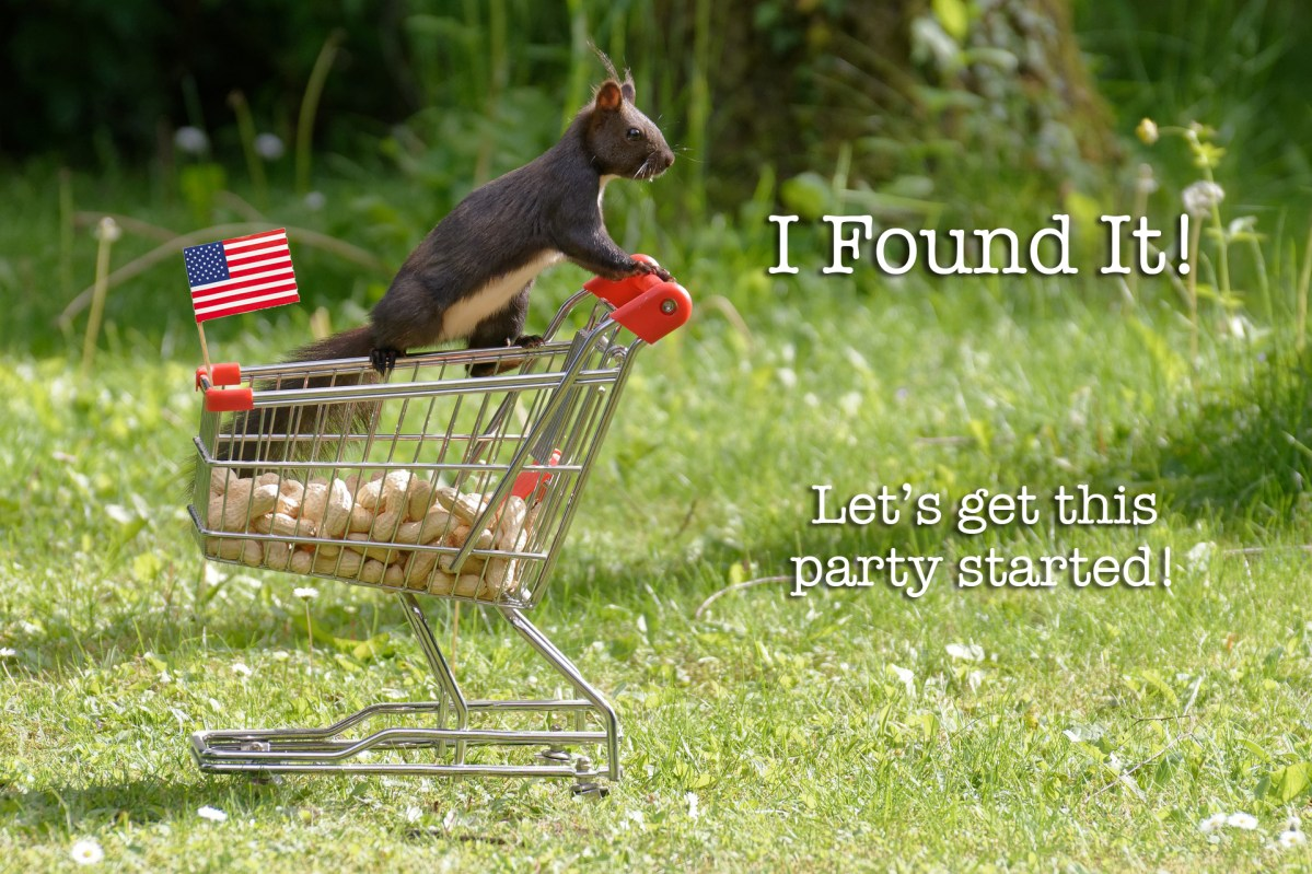 BIG SOLUTION: Well-Established Patriot Shop with Over 450 USA-Made Products with no Poisonous Chemicals, No Debt, and No Buyout – Ditch Big Box Stores Now!