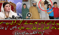 Reporter Ask Questions From Ayesha Gulalai's Brother