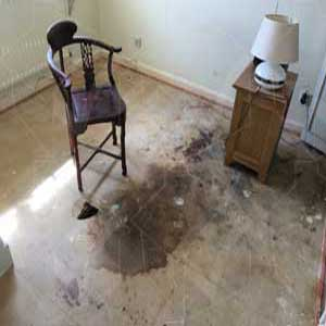 Unattended Death In The House Clearance & Clean Up Chiswick