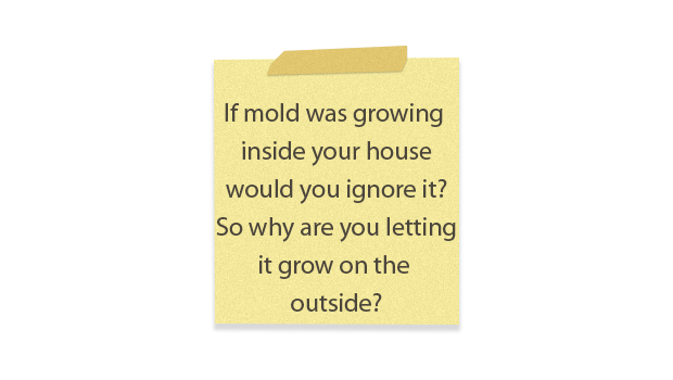 post it note about mold growing on exterior of home