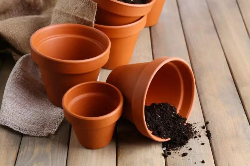 Vasi di terracotta o di plastica per le nostre piante