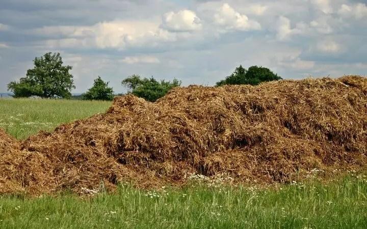 Concimazione di base o fondo e di produzione dell'orto biologico