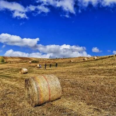 Entroterra Siciliano - foto di Matteo Taormina