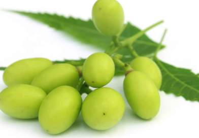L'olio di neem per la lotta biologica negli orti e frutteti