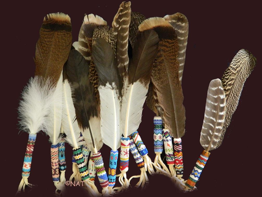 Resultado de imagen para indians and feathers art