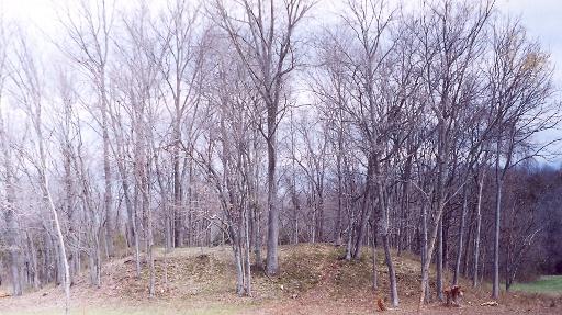 Platform Mound At Sellars Farm