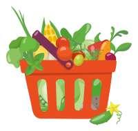 food shopping basket