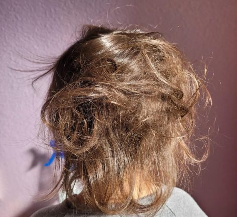 dry frizzy toddler hair