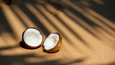 coconut oil is very good for you