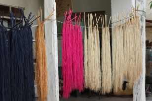 Séchage des fibres de Toquilla