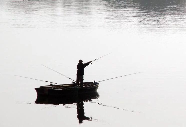 Un nouveau site internet permet de télé-déclarer les prises des pêcheurs de loisir. © Bill Tyne
