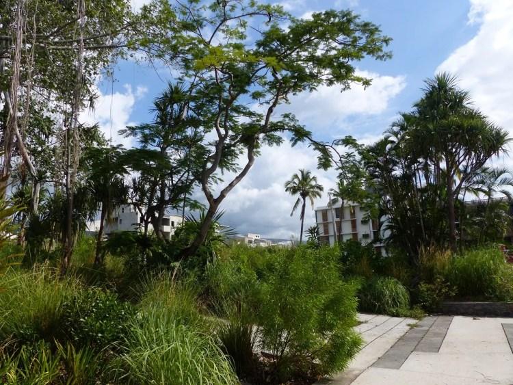 coeur de ville biodiversité