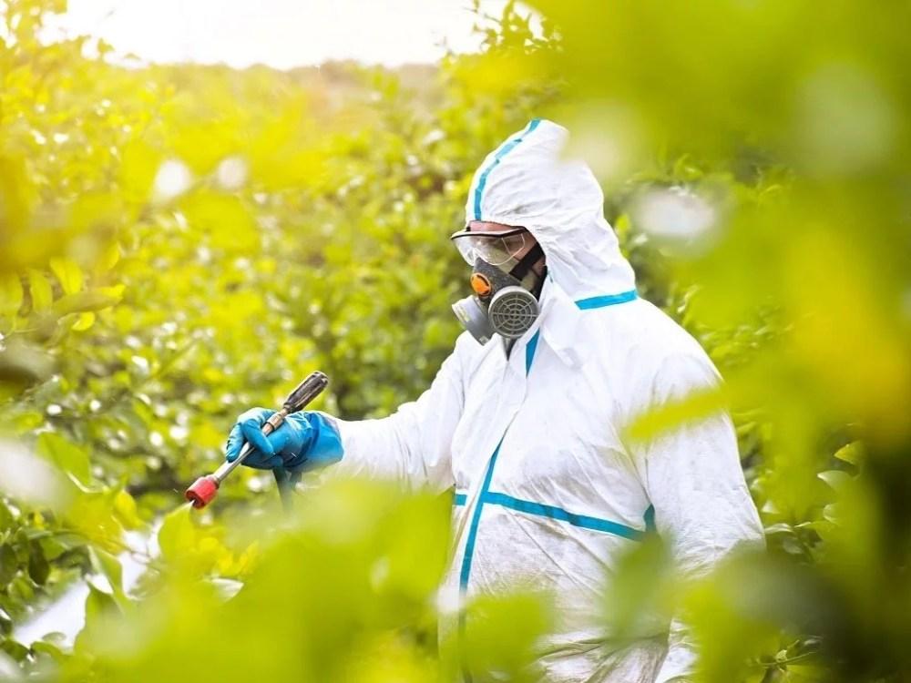 pesticides toxiques cachés