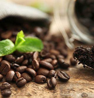 Zucchero e Caffè