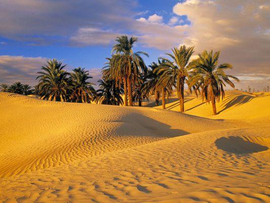 deserto, caratteristiche