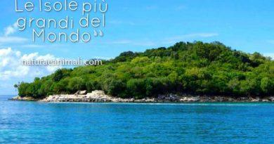 isola isole isole più grandi del mondo
