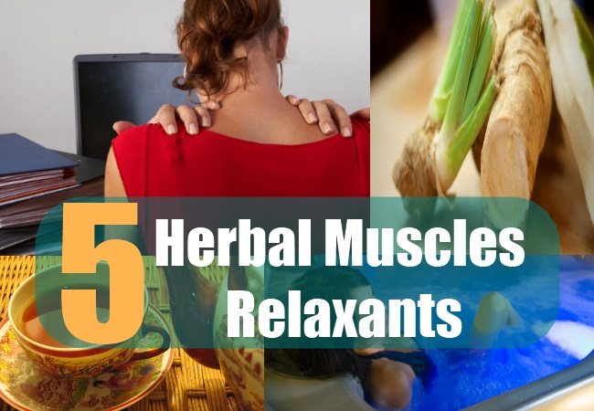 5 Herbal Muscles Relaxants