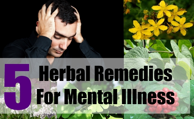 5 Herbal Remedies For Mental Illness