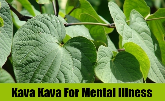 Kava Kava For Mental Illness