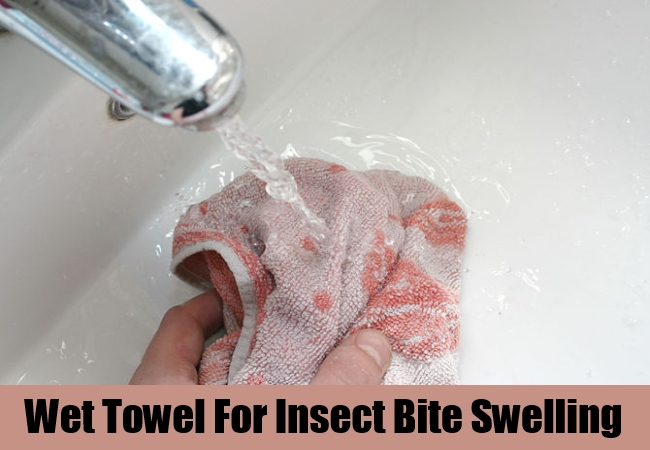 Wet Towel For Insect Bite Swelling