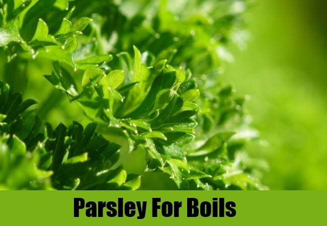 Parsley For Boils