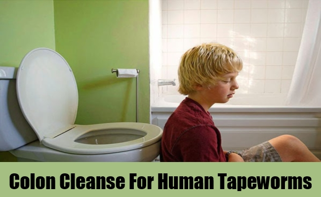 Colon Cleanse For Human Tapeworms