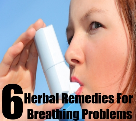 6 Herbal Remedies For Breathing Problems