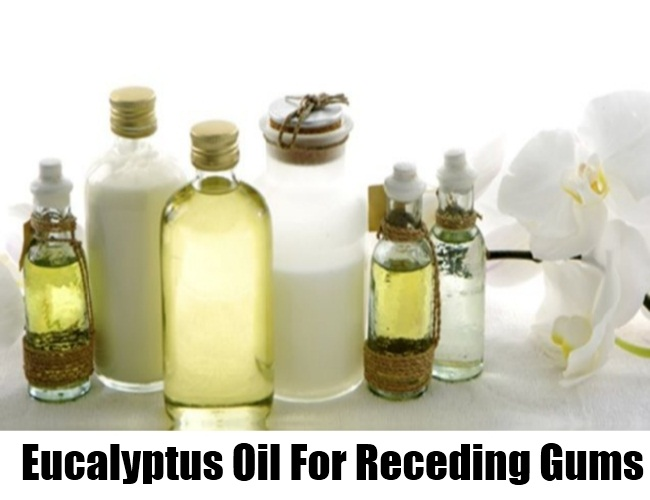 Eucalyptus Oil For Receding Gums