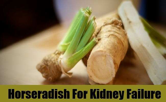 Horseradish For Kidney Failure