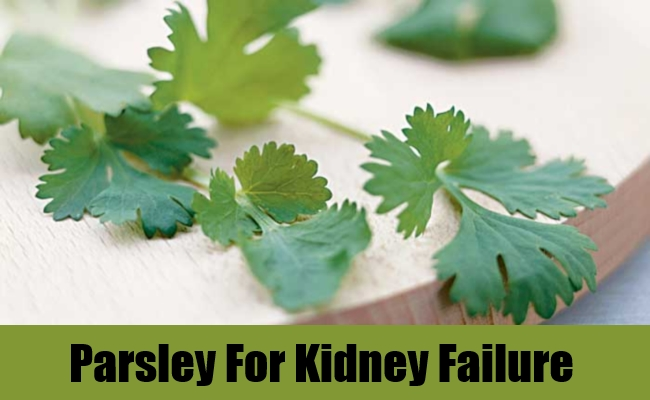 Parsley For Kidney Failure