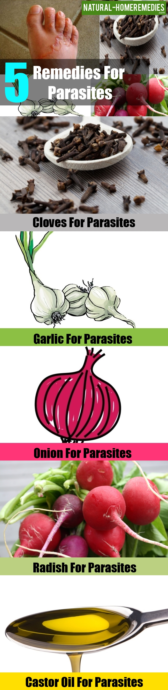 Remedies For Parasites