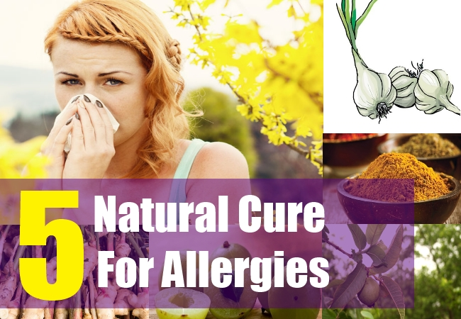 5 Natural Cure For Allergies