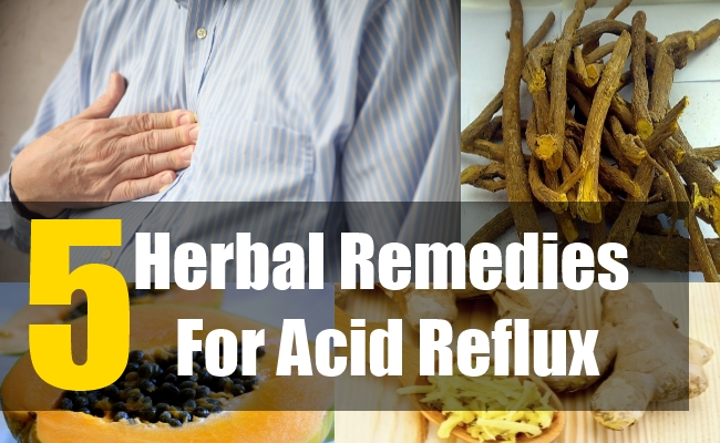 5 Herbal Remedies For Acid Reflux