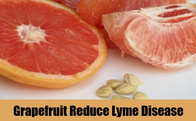 Grapefruit Reduce Lyme Disease