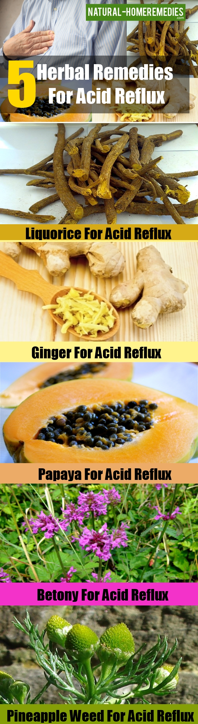 Herbal Remedies For Acid Reflux