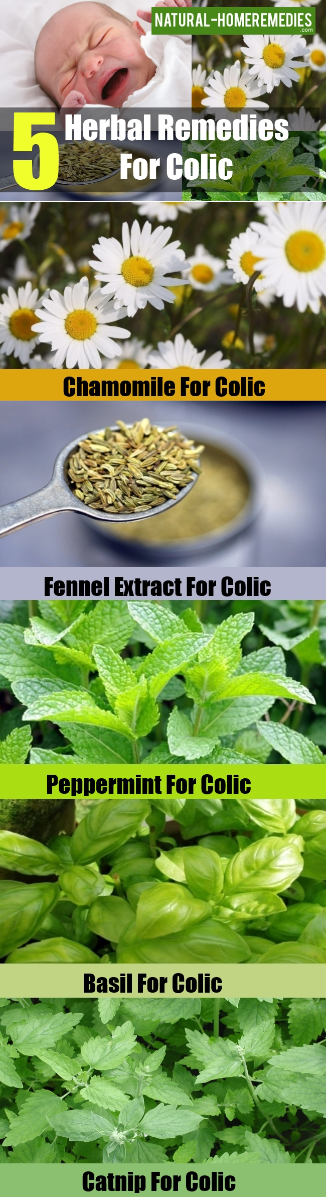 Herbal Remedies For Colic