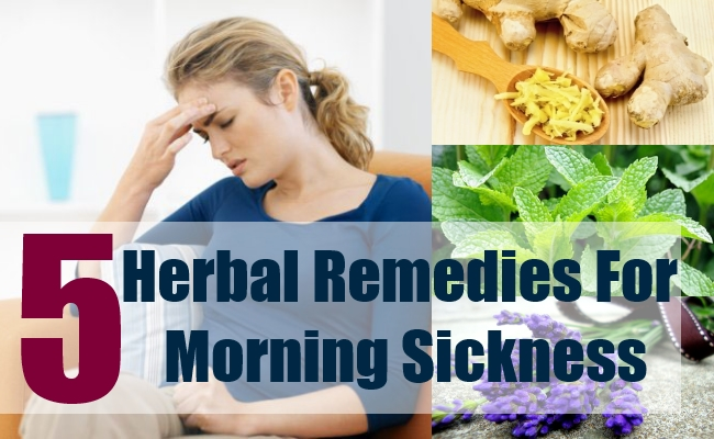 5 Herbal Remedies For Morning Sickness