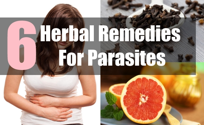 6 Herbal Remedies For Parasites
